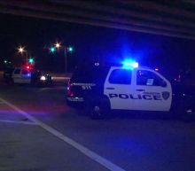 8-Year-Old Fatally Shot After Car Crash in Houston