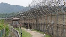 Latest North Korean defector reported to be a gymnast who jumped border fence