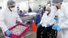 Ecuador no tiene notificación de China sobre el nuevo caso de camarón con COVID-19