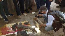 Mineros de oro colombianos encuentran tesoro inesperado: Un mastodonte fosilizado