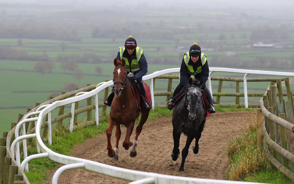 Saphir Du Rheu, right, will be in action at Aintree - Copyright (c) 2015 Rex Features. No use without permission.