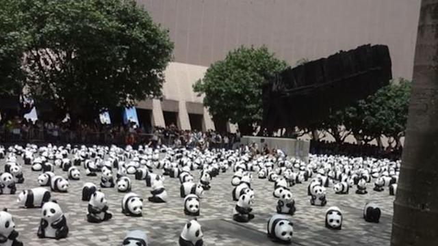 Pandas Descend on Hong Kong