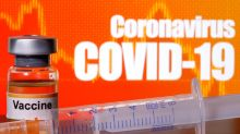 Zydus Cadila's COVID-19 vaccine candidate found safe in early-stage human trial