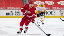 Adam Erne, Michael Rasmussen among players who took steps forward for Red Wings