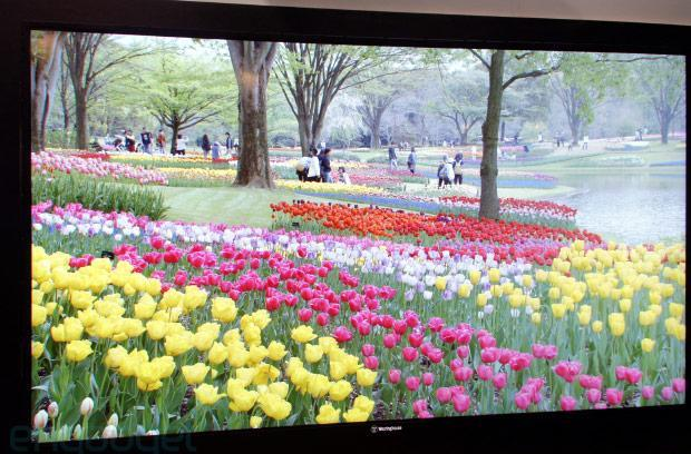 Westinghouse 110-inch 4K TV to ship alongside 65, 55 and 50-inch models in Q1