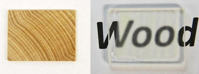 Scientists made see-through wood that's stronger than glass