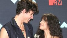 Camila Cabello Rips Shawn Mendes Breakup Rumors In Most NSFW Way