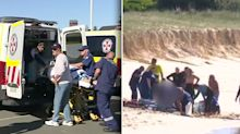 Surfer tried to warn friends of 4.5m shark before fatal attack