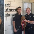 Owner arrested after dog rescued from hot car at Newark Airport