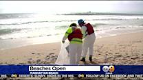 South Bay Beaches Reopen While Oil Spill Clean-Up Continues