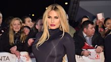 Katie Price 'devastated' after delivery van runs over and kills her family dog