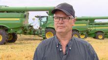Little harvest, big impact: Alberta volunteer farmers help battle global hunger