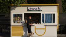 Corea del Norte confisca perros a sus dueños y los vende a restaurantes: reporte