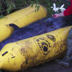 Stranded whale in London's River Thames put down