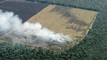 Deforestation in Brazil's Amazon falls for third month, still high