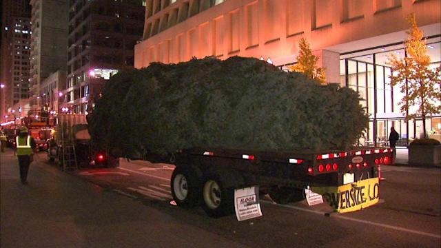 100th Christmas tree lighting held at Daley Plaza