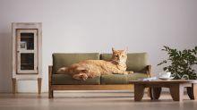 Te enamorarás de estos muebles en miniatura especialmente diseñados para gatos