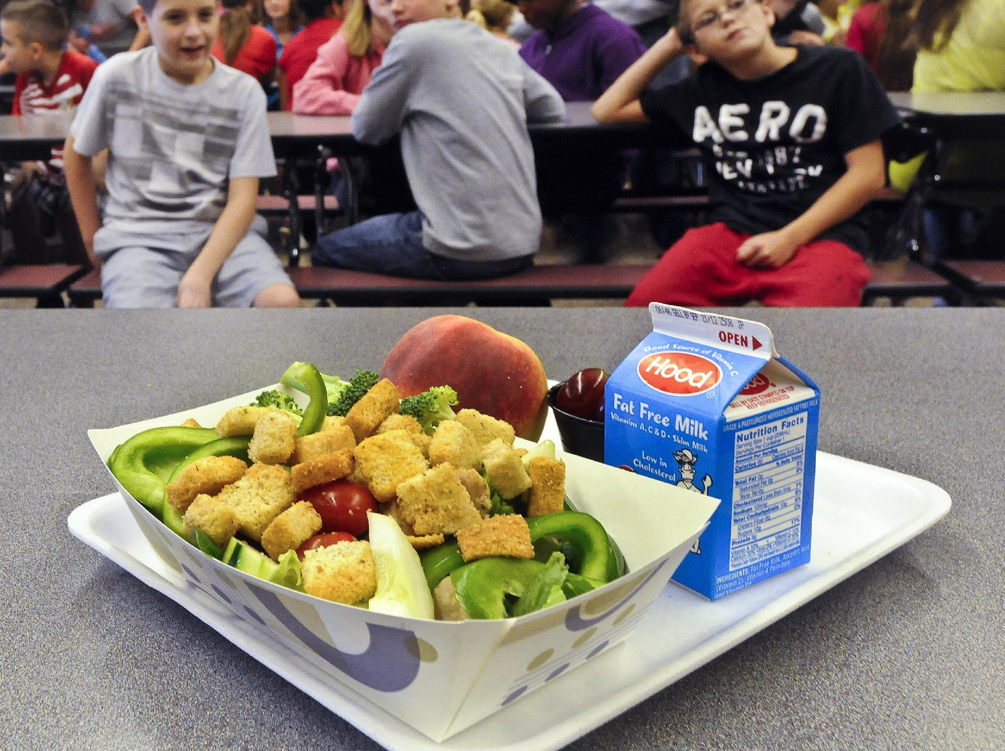 FILE - In this Tuesday, Sept. 11, 2012 file photo, a select healthy chicken salad school lunch, prepared under federal guidelines, sits on display at the cafeteria at Draper Middle School in Rotterdam, N.Y. After just one year, some schools across the nation are dropping out of what was touted as a healthier federal lunch program, complaining that so many students refused the meals packed with whole grains, fruits and vegetables that their cafeterias were losing money. (AP Photo/Hans Pennink, File)