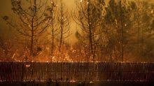 Científicos refutan la teoría de Trump sobre el origen de los incendios forestales en California