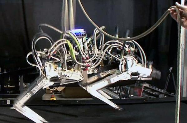 DARPA's robotic cheetah sets a land speed record racing into your nightmares (video)