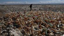 Horrifying images of lake that's more plastic than water
