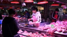Pig infected with African swine fever washes up in Taiwan