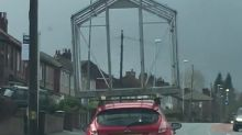 Driver straps greenhouse to his car