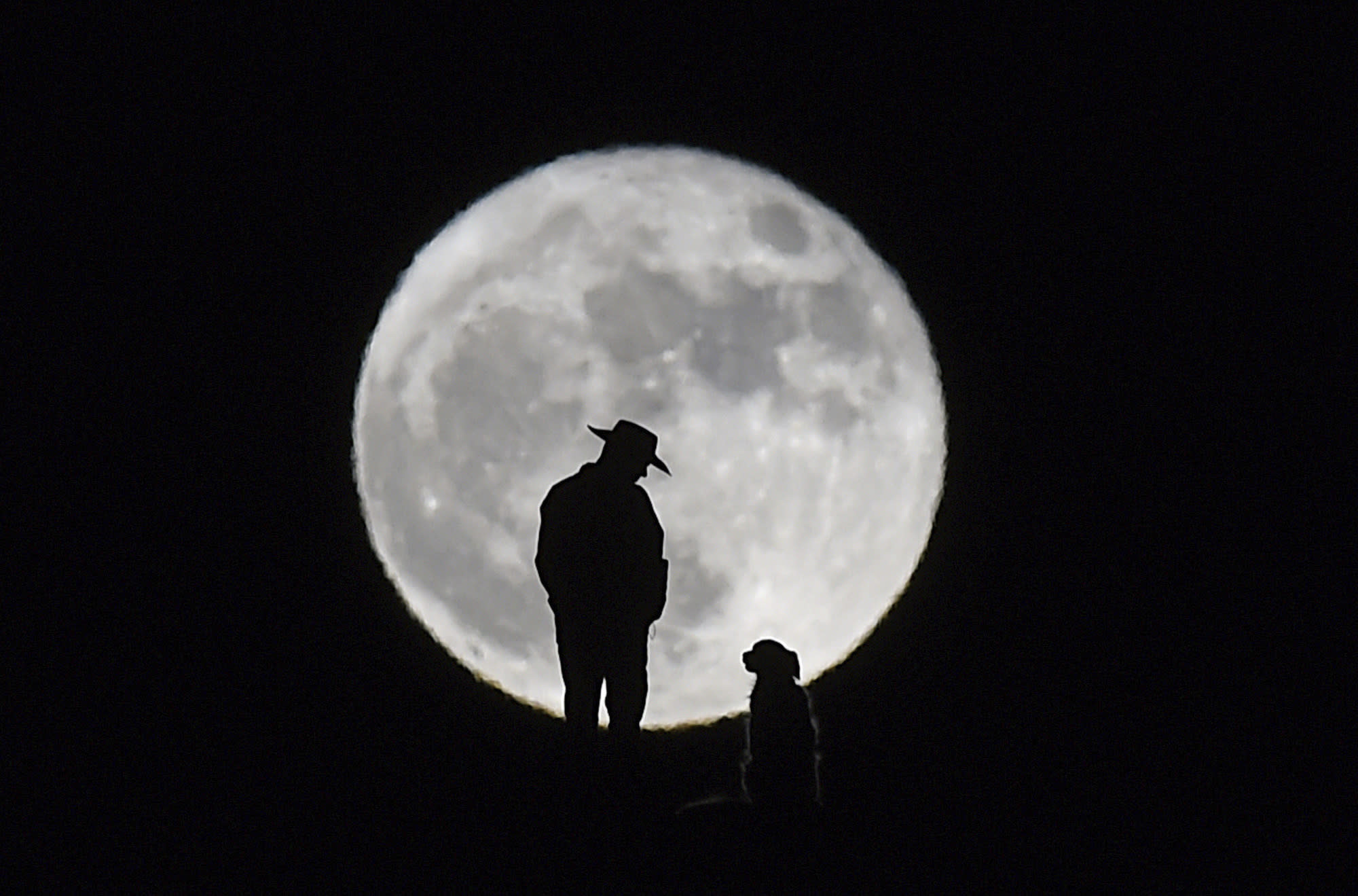 <p>A man stands with his dog on a hill behind Shadow Mountain Sports Complex in Sparks, Nev., Monday, Nov. 14, 2016. The brightest moon in almost 69 years is lighting up the sky in a treat for star watchers around the globe. The phenomenon known as the supermoon reached its peak luminescence in North America before dawn on Monday. Its zenith in Asia and the South Pacific was Monday night. (Andy Barron/The Reno Gazette-Journal via AP) </p>