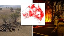 Disturbing map reveals trend that 'primed' Australia for bushfire crisis