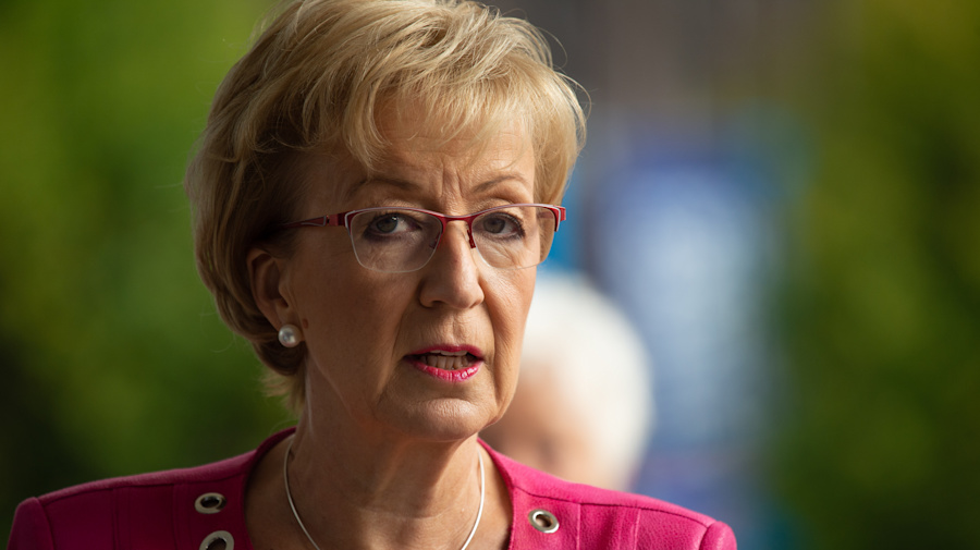 Andrea Leadsom blasts UK business leaders over response to Brexit deal