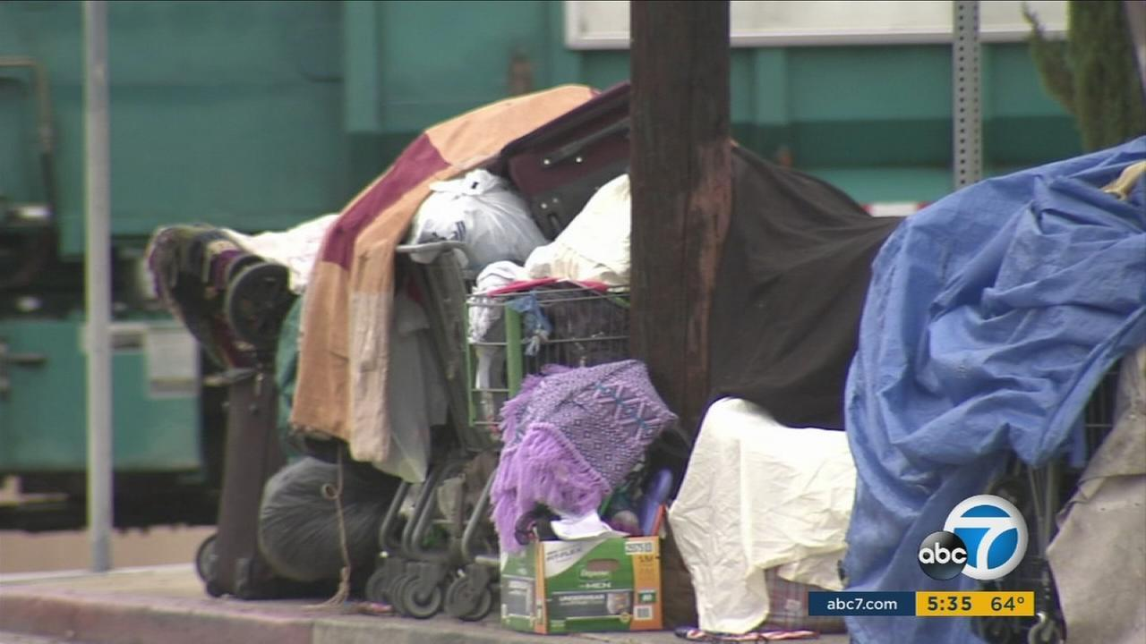 City Of Los Angeles Parking Violation >> LA to allow homeless to pay parking tickets with community service [Video]
