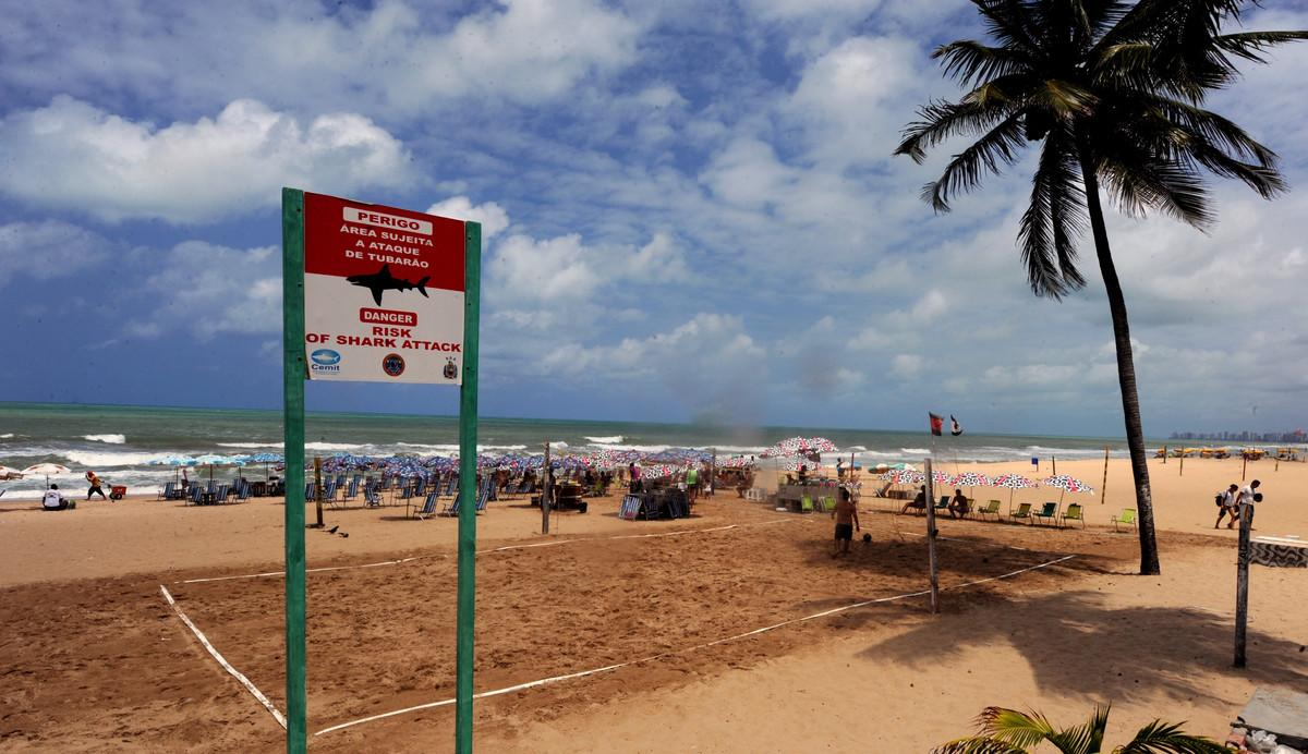"""<p>In the past 20 years Brazil has become an increasingly hazardous place to go swimming.</p>  <p>While the north-east coast might have a stunning coastline and bath-temperature waters, <a href=""""http://www.bbc.co.uk/news/world-radio-and-tv-19720455"""">the BBC report</a> that off the shore of Recife are many aggressive sharks, which has made this one of the most dangerous places in the world to swim.</p>  <p>Brazil's sharks appear to be some of the most dangerous in the world. Thedeath rate of 37% (21 of the 56 attacks in 20 years) is much higher than the worldwide shark attack fatality rate, which is currently about 16%, according to the Florida State Museum of Natural History.</p>  <p>Picture: Placard warns about a shark hazard in Boa Viagem beach in Recife, northeastern Brazil on September 11, 2012.</p>"""