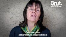Défendue par Emmanuel Macron, qu'est-ce que la souveraineté alimentaire ?