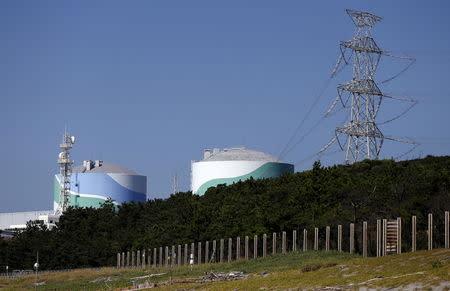 Kyushu Electric Power's Sendai nuclear power station is seen in Satsumasendai, Kagoshima prefecture, Japan, August 8, 2015. REUTERS/Issei Kato