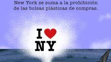 Nueva York, el nuevo destino favorito de las ballenas
