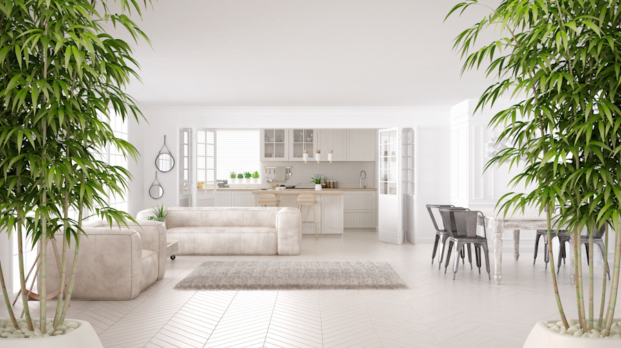 Would you pay more for a house with good feng shui?