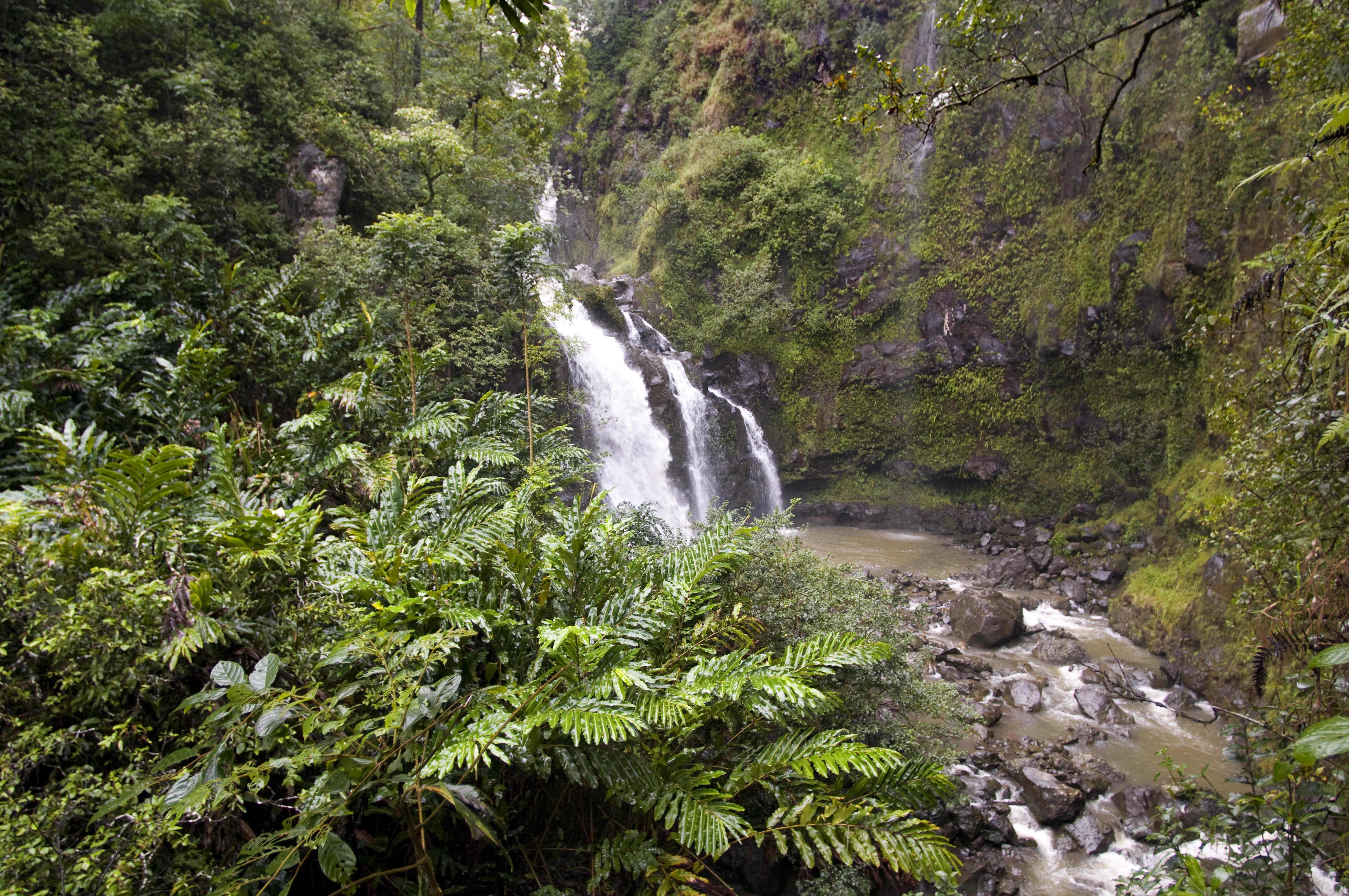 Widow dies rock climbing in Hawaii during 'healing vacation