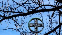 Bayer looks at options for consumer brands, animal health - sources