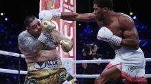 EN IMAGES - Revivez la victoire d'Anthony Joshua contre Andy Ruiz