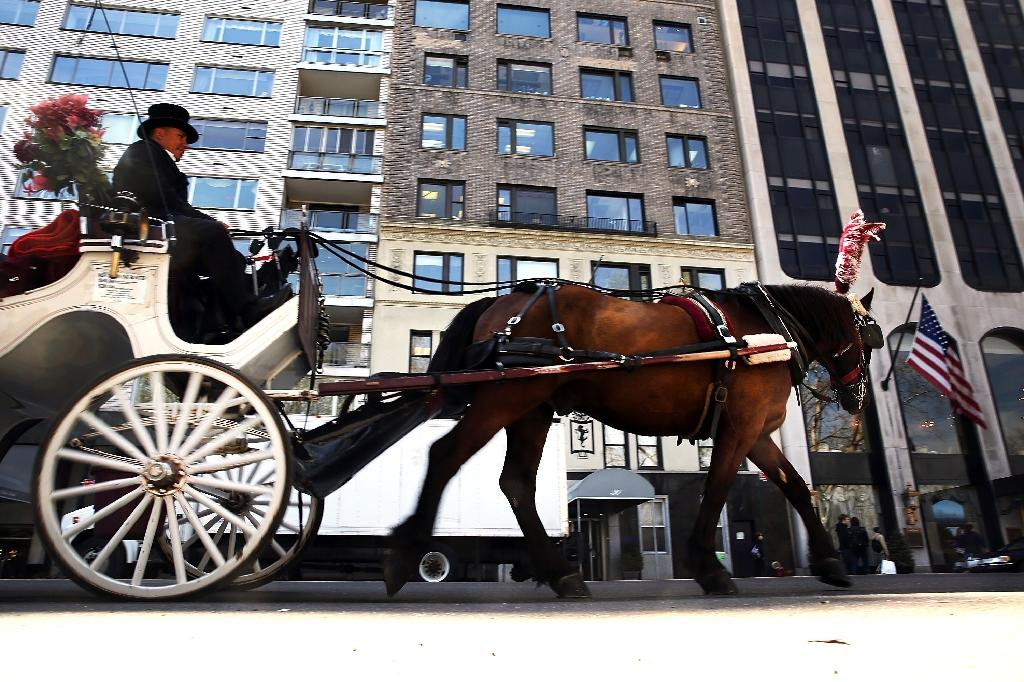 New York's horse carriage industry, which mainly takes tourists through Central Park, has come under criticism from animal welfare agencies (AFP Photo/Spencer Platt)