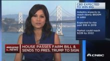 Farm bill may be big win for hemp-based product manufactu...