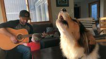 Meet Tuk — the dog who hates music