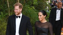 'It's difficult for Prince Harry to explain to Meghan how intense royal life is'