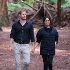 Buckingham Palace Just Issued a Statement About Prince Harry and Meghan Markle's Possible Move to Africa
