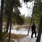 Fisherman mauled by grizzly near Yellowstone dies from his injuries, officials say