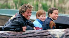 William and Harry: Diana was 'failed' by BBC and 'lost her life' because of Panorama interview