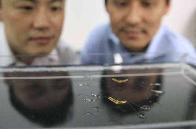 Tiny robotic insect can jump on water like a strider