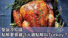 【聖誕傳統】點解聖誕要食火雞?有趣習俗你要知