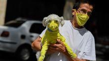 Can pets get the coronavirus?