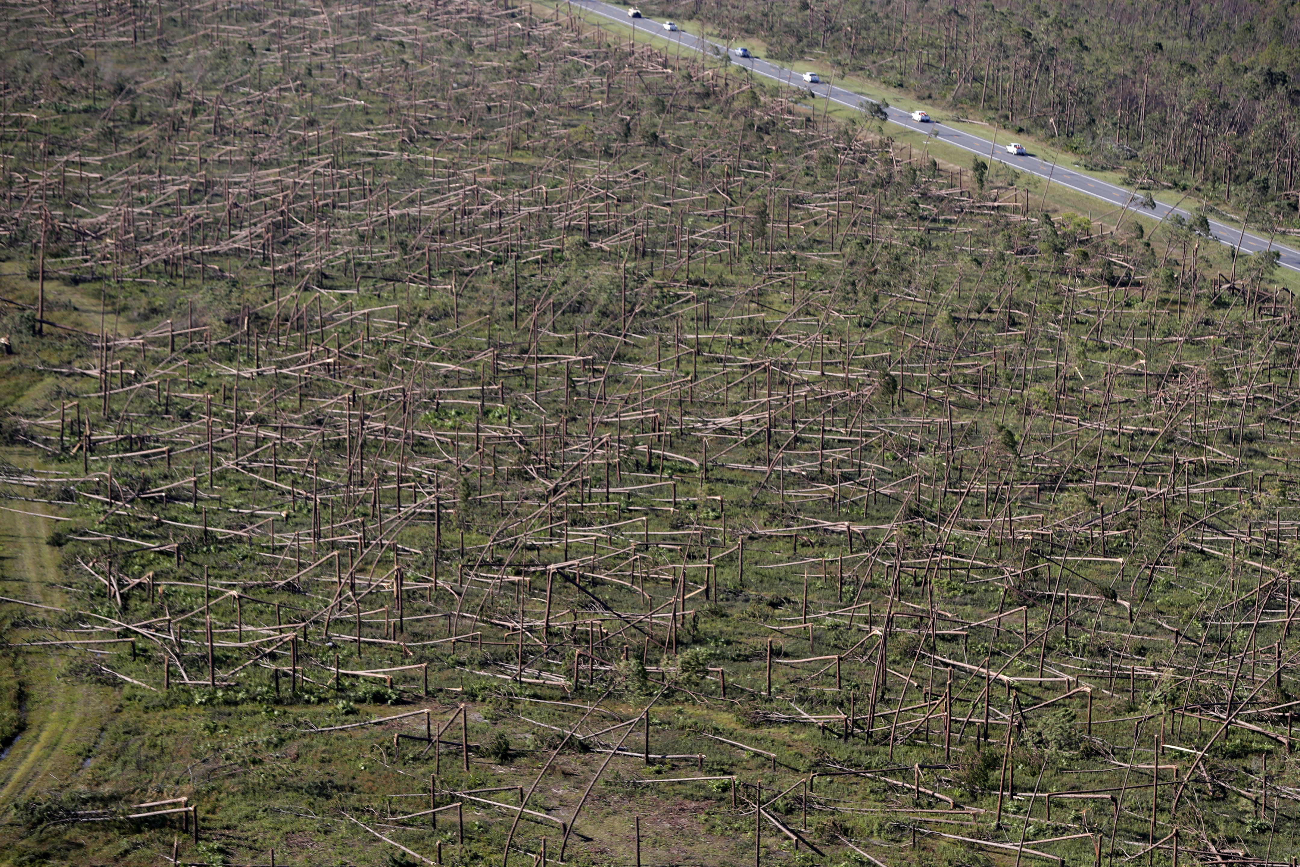 FILE - In this Oct. 12, 2018, file photo, downed trees are seen from the air near Tyndall Air Force Base in the aftermath of Hurricane Michael near Mexico Beach, Fla. The federal government is sending $800 million in aid to farmers in four southern states that were most devastated last year by hurricanes Michael and Florence. Nearly half of that money will benefit Florida timber farmers, who suffered catastrophic losses when Hurricane Michael came ashore in October 2018 and destroyed 2.8 million acres of timberland. (AP Photo/Gerald Herbert, File)